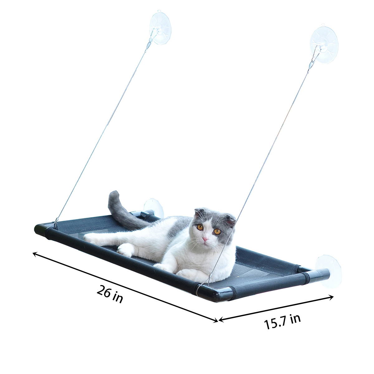 Superb Details About Cat Bed Window Perch Hammock Sunny Seat Window Mounted Cat Beds Pet Cot 38Lb Dailytribune Chair Design For Home Dailytribuneorg
